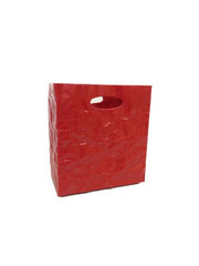 Surplus plastový úložný box 245 x 228 x 145 mm, červená